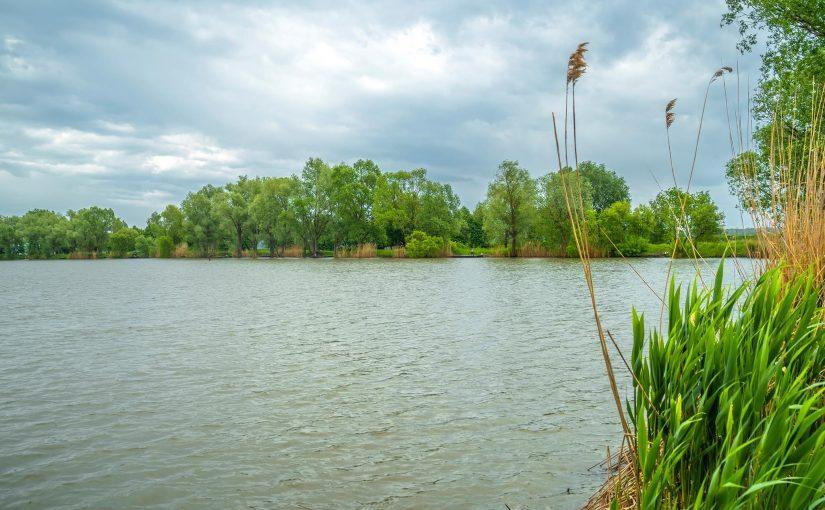 Вовкове Озеро – лучшее место в Киевской области для рыбалки!
